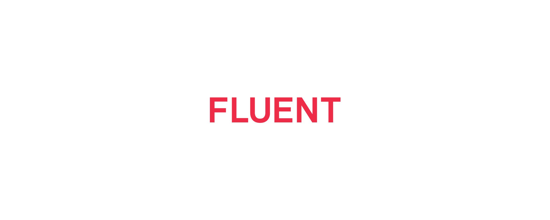 raykovich_fluent_grid-00